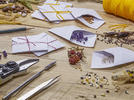Picture for Home gardening tips: The pros and cons of using heirloom, open-pollinated and hybrid seeds