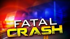 Cover for 2 from Arizona killed after collision with cow in northwest Kansas