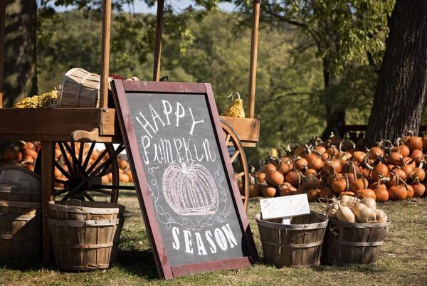 Picture for Weekend homeschool links: October 22