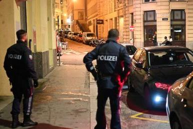 Picture for Police launch major operation in Vienna after shots fired