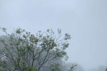 Picture for Alderson Weather Forecast