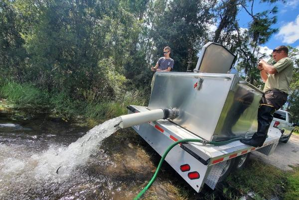 Picture for Doe Lake at Ocala National Forest stocked with thousands of catfish