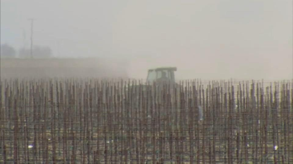 Picture for Valley farmers might face harshest ever water restrictions due to drought