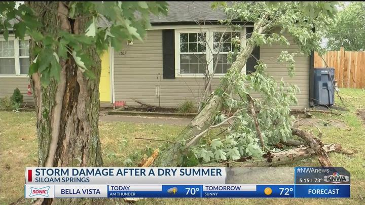 Cover for Storms roll through Northwest Arkansas, cause damage in Siloam Springs