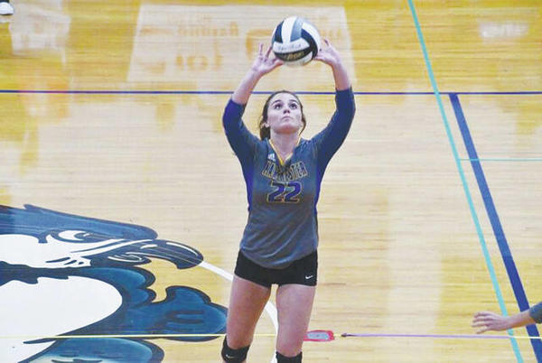 Picture for Lady Hounds sweep past Ripley