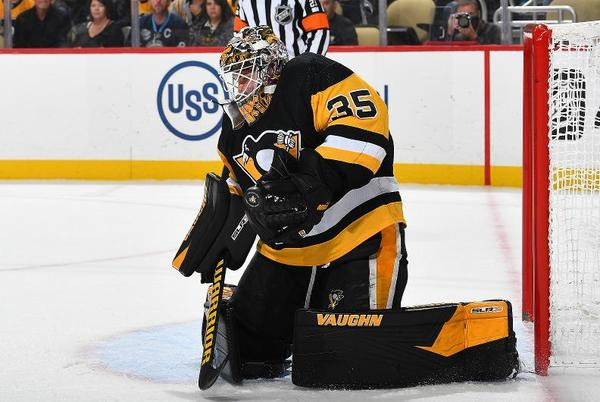 Picture for The Pittsburgh Penguins Take More Hits