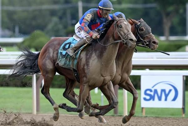 Picture for Bell's the One skipping the Breeders' Cup for Kentucky target