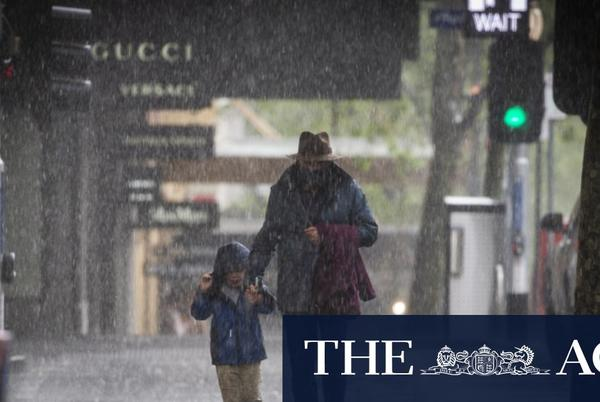 Picture for SES receives more than 200 calls as wind, rain hits Victoria