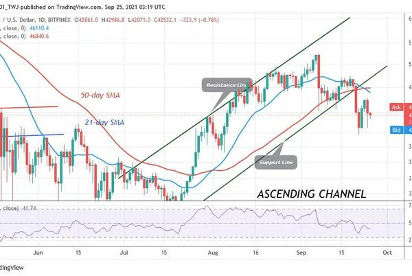 Picture for Bitcoin (BTC) Price Prediction: BTC/USD Holds above $42k as Market Forces Reach Equilibrium