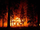 Picture for California says federal 'let it burn' policy is reckless as wildfires rage out of control