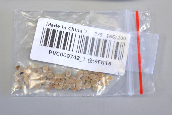 Picture for Sketchy seeds from China in the mail finally explained