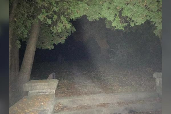 Picture for Port Washington's Ghost Tours and Hunts return for this spooky season