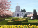 Picture for Ginny Burdick will leave Oregon Senate after 25 years
