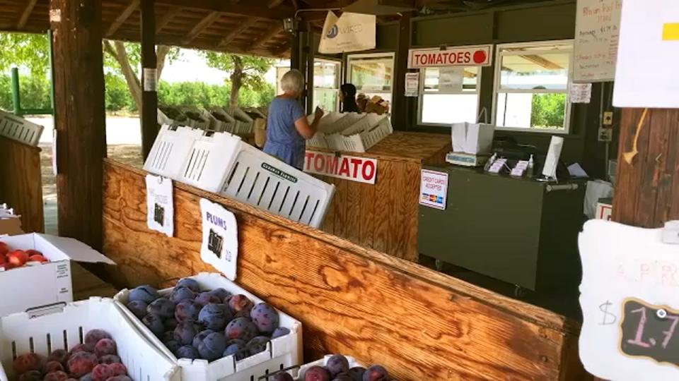 Picture for Hidden Adventures: Fresno County Fruit Trail