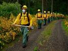 Picture for Washington Heads Into Wildfire Season With a Drought and 410 Blazes so far on State Land
