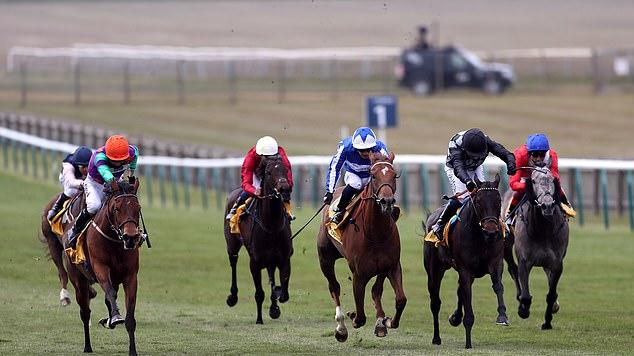 Picture for ROYAL ASCOT TIPS - DAY TWO: Armory could have the edge in the Prince of Wales's Stakes, while Aidan O'Brien boasts a strong hand in the Queen's Vase