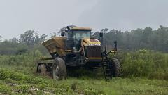 Cover for How has the recent heavy rainfall impacted Alabama farmers?