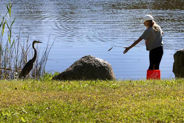 Picture for Angling for some fun: Youth gather at American Legion's first fishing derby in Monroe