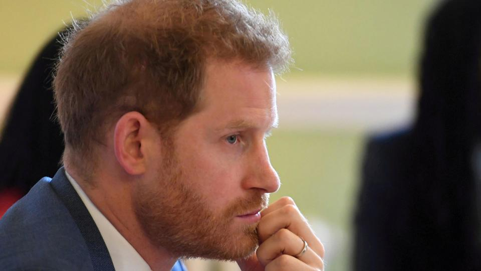 Picture for Prince Harry should settle bird-shooting mystery in memoirs, say campaigners