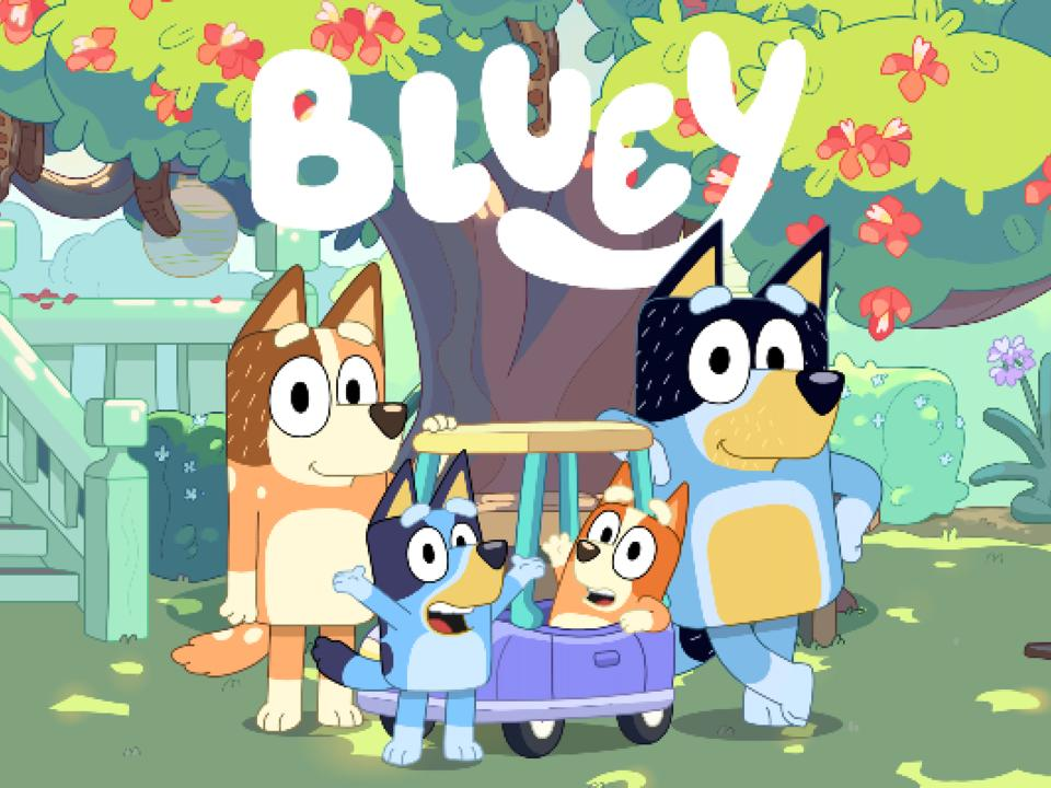 disguise-scores-bluey-costume-rights