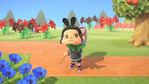 Animal Crossing New Horizons Insects Guide And Complete List