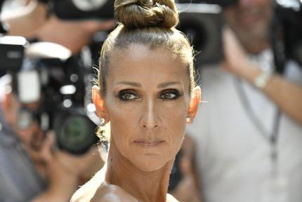 Picture for Celine Dion shares heartbreaking health update: 'I have to focus on getting better'