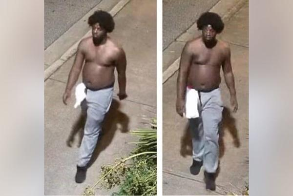 Picture for University of Georgia police search for sexual assault and robbery suspect