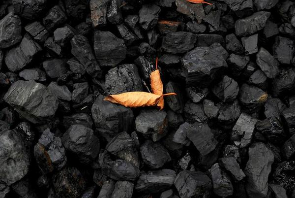 Picture for Coal industry did not show potential of clean tech quickly enough -WCA boss
