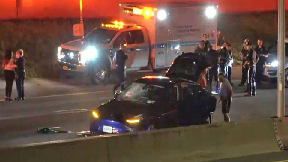 Picture for Man struck and killed while changing tire on Long Island Expressway