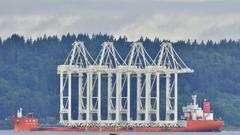 Cover for Seattle-bound cranes pass by Edmonds