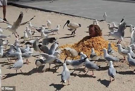 Picture for Prankster covers himself in $1,000 worth of hot chips and gets attacked by seagulls for Instagram likes