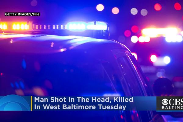 Picture for Man Shot In The Head, Killed In West Baltimore Tuesday