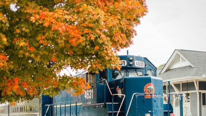 Cover for The Autumn Limited Train Ride In Georgia Is Scenic And Fun For The Whole Family