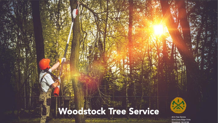 Cover for Tree Service Woodstock, GA