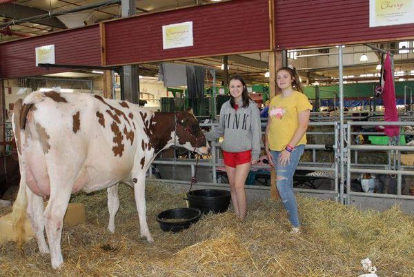 Picture for Teen Interested in Ag Career Shows at New York State Fair