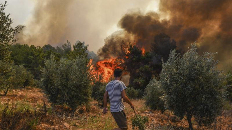 Picture for Death toll climbs to 6 in Turkey wildfires