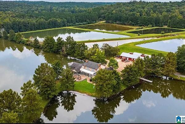 Picture for Did You Know You Can Buy an Island in Gordo, Alabama?