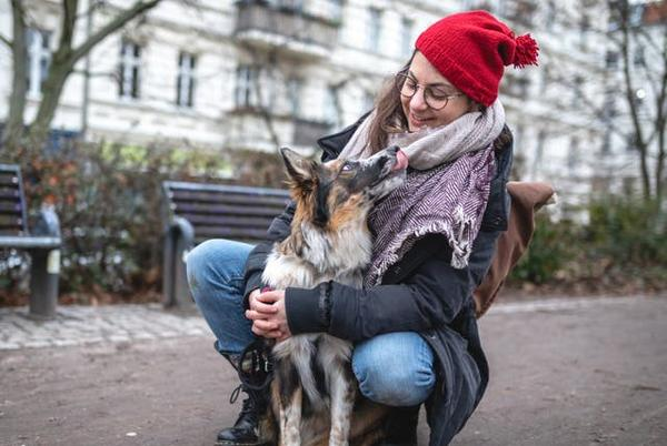 Picture for Pet experts explain how to support our dogs during the winter