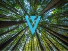 Picture for XVG Price Prediction 2021, 2022, 2025