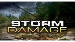 Cover for Friday storms cause multiple downed trees, power lines, numerous outages