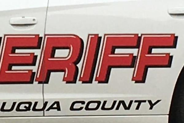 Picture for Sheriff's Office Reports Two Arrests from North County Altercations