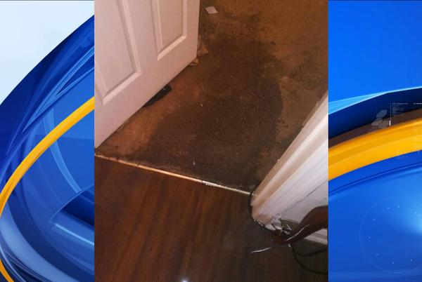 Picture for Decatur apartment company blames City of Decatur for flooding in resident's apartment