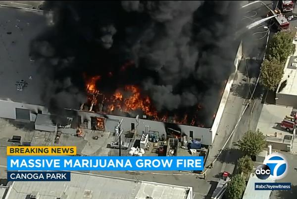 Picture for 3 men badly burned in explosion, fire at Canoga Park marijuana grow operation