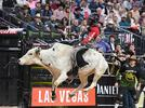 Picture for Best Bets: PBR, Franky Perez, Rex Navarrete and more for your Las Vegas weekend