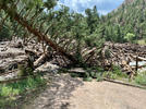 Picture for All Poudre Canyon Flooding searches called off
