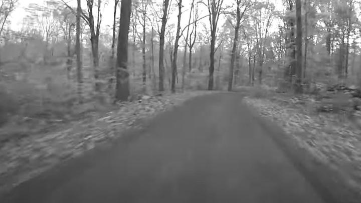 Cover for This One Connecticut Road is Considered the Scariest in the State