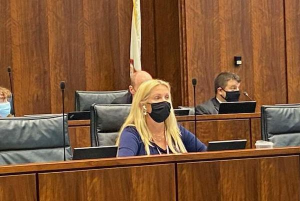 Picture for Rezin lays out 'serious concerns' about Illinois Board of Education's 'continuous overreach' concerning state mask mandate enforcement