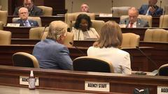 Cover for Day Two: Arkansas' special session on COVID-19 legislation