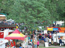 Picture for Oil Heritage Festival Kicks Off on Thursday; Early Events Begin Today