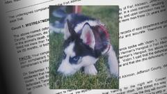 Cover for Fort Atkinson dog trainer behind bars, connected to death of Husky puppy